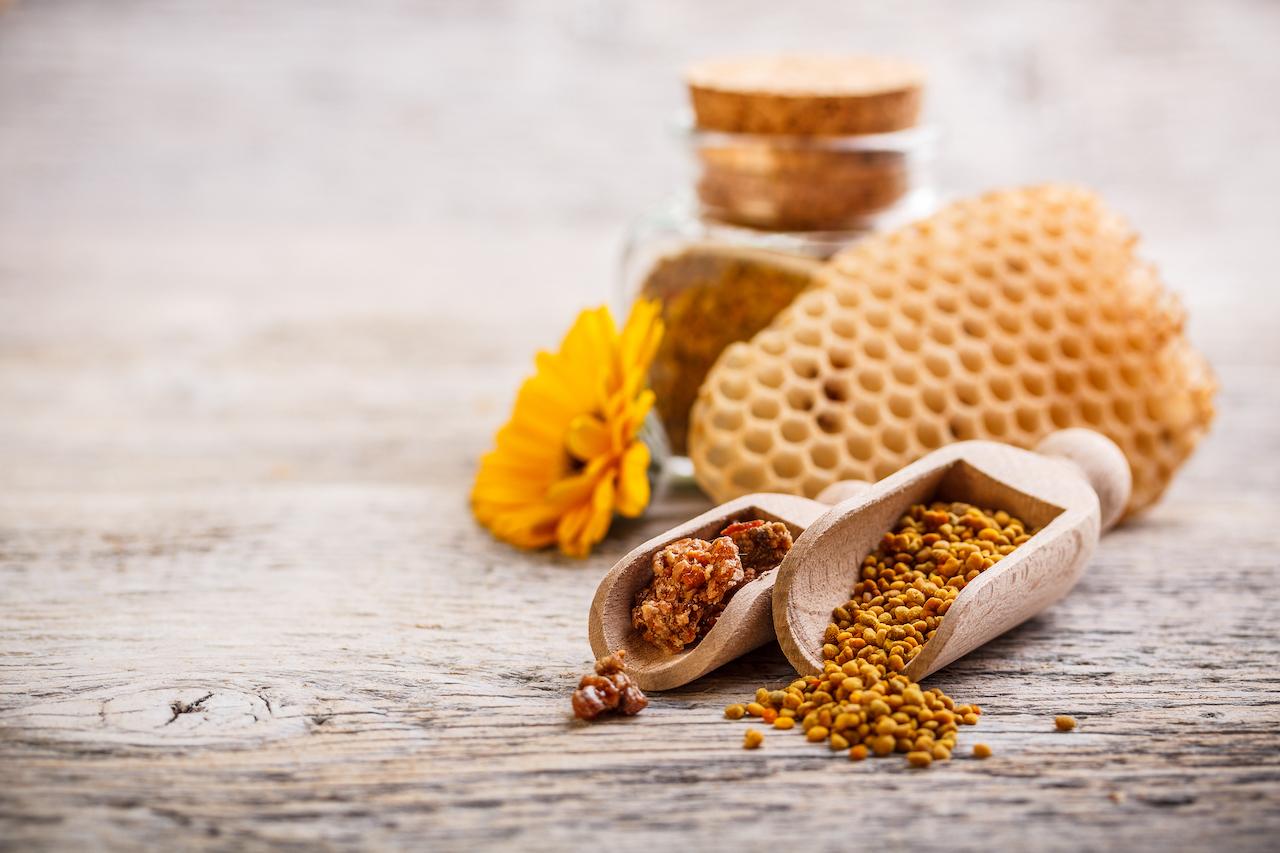 Green Life - Propóleo + Equinácea Regalo de las abejas